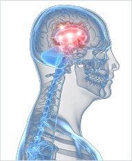 Treatment for Brain Injury and Neurological Disorders | Associates